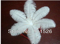 "Long 40-45cm 16-18"" fluffy natural ostrich plumes feather feathers table centerpiece,wedding centerpieces black white for sale"