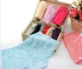 Bamboo fiber female boxer briefs lace stars underpants 10pcs/lot free shipping