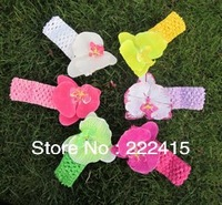 Crochet Headbands Moth Orchids Flowers Baby Butterfly,50 pcs/Lot, Customized order if 400 pcs/colorFree Shipping