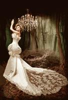 The bride wedding dress formal dress 2013 tube top fashion strap train lace slim waist and fish tail