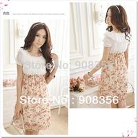 Hot! Promotion Ladies Dress Women Dresses BOHO Exotic Summer Floral Chiffon Mini Dress Free Shipping C0006P