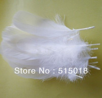 white goose feather 15-20cm free shipping wholesale