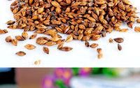 500g Super Organic Dried Barley Tea ,100% handmade organic tea,grain tea,Free shipping!