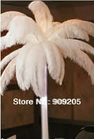 "wholesale 10pcs/lot 12-14"" White fluffy Ostrich Feather Plume FREE SHIPPING wedding decoration"