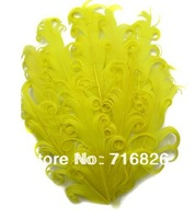 2014 hot selling wholesale free shipping 10pcs yellow Goose Feather Pads +DIY feather pad