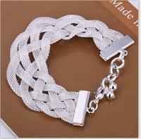 Free shipping wholesale net prepared bracelet fashion jewelry 2013 new hot 2013