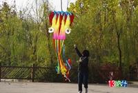 5.5 meters octopus kite easy flying kite