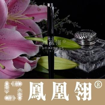 Calligraphy pen ii fountain pen art pen 5