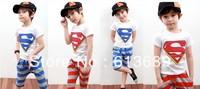 Free Shipping!&5PCS/LOT!2013 2 colors the children's dresses,hot sales,origional,princess dress,superman pattern