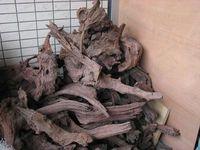 Cylinder fish tank plants driftwood natural wood