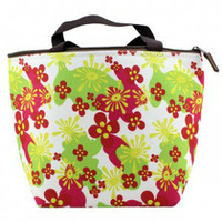 Free Shipping Retail Fashion Design cooler bag, keep food fresh,Fashion lunch bag/pinich bag