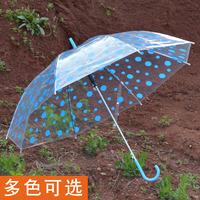 Princess dot umbrella fully-automatic transparent long-handled umbrella props dance gift umbrella