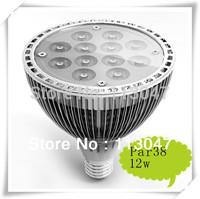 Epistar E27 PAR38 LED Spotlight 12W , 85-265V AC 1080lm  CE/ROHS white/warm white 85W replacement
