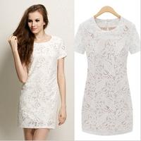 Women's Fashion  Lace Dress / Summer  Classical Zipper Lace Dress Free Shipping