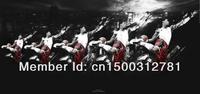 """08 Derrick Rose Chicago Bulls NBA MVP Basketball Star 24""""*50"""" Poster"""