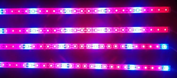 Frete grátis Waterproof lght crescer, bar tira SMD5050 crescer luz, 14.4W / m, com IP 65 à prova d'água(China (Mainland))