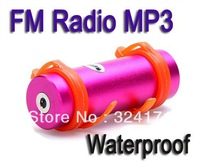 60pcs Swimmer waterproof MP3 player digital music player 4GB FM Radio Best sound 4 colors in stock good free shipping