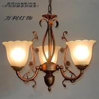 Fashion brief rustic lamp fashion pendant light lamps wl-27d