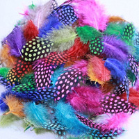 500Pcs/Lot 5-12CM Guinea Fowl Spotted Feathers Mixed Color Craft Feather FREESHIPPING