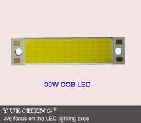 newly design  led bar COB lamp beads hot sales  30w surface diode bar cob LED lamp beads  free shipping