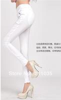 Hot Sale Women's Plus Size100%  cotton 7 color Candy colorsTight Stretch pants trousers,R93,DY F539