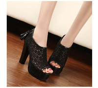 2014 hot sale free shipping high heel shoes peep toe heels platform women heels fashion sexy cloth pumps1 pair wholesale TB-ZY30