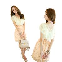 wholesale One-piece dress summer 2013 ladies elegant dot V-neck laciness chiffon one-piece dress  freeshipping
