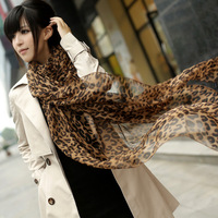 2013 new womenfashion  Plus size  leopard print chiffon silk scarf