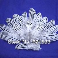 100Pcs/lot 7-10cm Natural White Black Silver Pheasant Feather Small Silver Pheasant Feather Quill Fly/Fishing/Craft FREESHIPPING