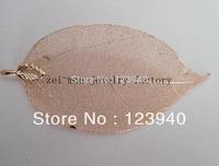 rose gold plating evergreen leaf  natural leaf
