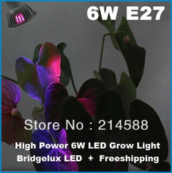 10pcs E27 6W 3x2w 2Red + 1Blue LED Grow light for flowering plant and hydroponics system Free Shipping(China (Mainland))