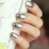 2013 hot new 24 pcs Western style metal punk zebra False Nails Art Tips Fashion Artificial false nails patch Free shipping