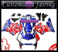 Customized fairing -Customize ABS Fairing -Motorcycle Fairing kit CBR900RR 919 98 99 CBR919RR CBR900 1998 1999 98 99 Bodywork Bo