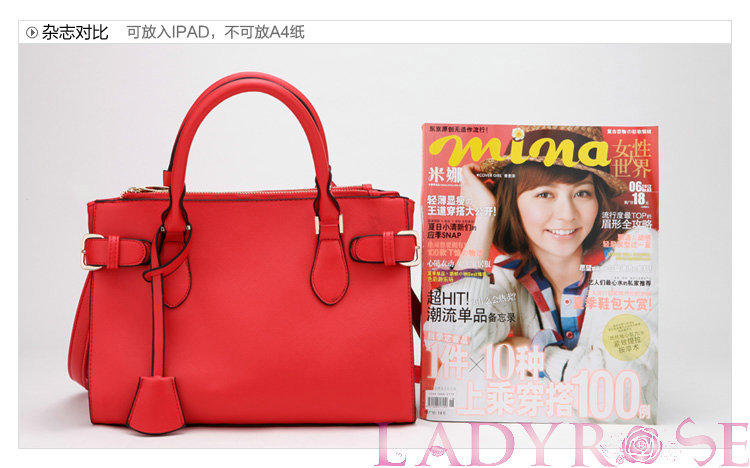 Free Shipping 2013 new fahsion style of spring and summer big women handbag portable shoulder bag Messenger bag LR102(China (Mainland))