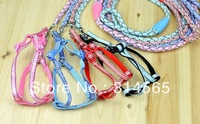 Free Shipping 5pcs / Lot Twill Thoracodorsal Pet Leash Rope Pet Supplies