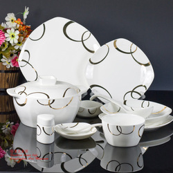 Square 56 high quality bone china tableware rich a196 dinnerware set(China (Mainland))