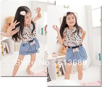 6PCS/LOTFree Shipping!in summer 2013 children flower girl dress vintage girls cc clothes girls summer dress baby dress princess
