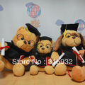 New Fashiong Dr.teddy bear / Dr.dog cute plush toy,  27CM, 1PC