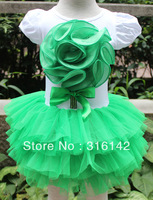wholesale hot sale! 2013 new b2w2 girls dresses with big flower for summer cotton  many color 5pcs/lot free shipping DF-4