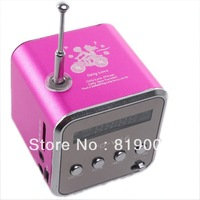 New Fashion Hot Pink Micro USB Mini Speaker Music Player Portable FM Radio Stereo PC Mp3 750094