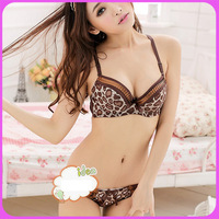 NEW Plus Size Women Set 36 C D Cup Side Gathering Push Up Bra Sexy Bra Panty Set Leopard Print Wholesale&Retail 128T