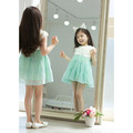 the lovely girl tutu dress beauty gift summer Children rose princess dress kids clothing