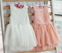 Hot sale 2013 new girls lace dresses baby TuTu dresses with belt Kids Mini rose shabby dress Child flower dress 5 PCS wholesale