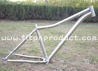 Gade 9 Titanium Fat Bike Frame ID44mm Headtube/Belt Drive/Sliding Dropouts