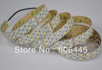 24V 120LEDs/m SMD 5050 Double Line Double Row Warm White LED Strip