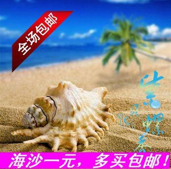9@ Shell natural sand sea sand 100 tank