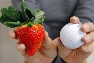 100 Seeds red fruit strawberry seeds DIY Garden