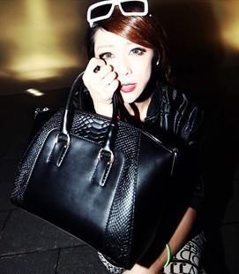 2015 Women' Fashion Bag Serpentinite Handbag Shoulder Messenger Bag in Stock