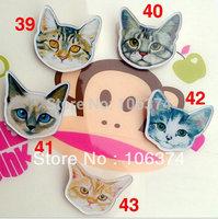 2013 New Hot Selling Acrylic Badge Cool Brooch Cute Cat Brooch 30pcs/lot Mix items