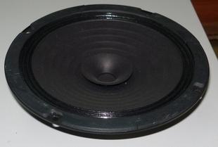 Absolutely original Japanese Roland  full-range speakers